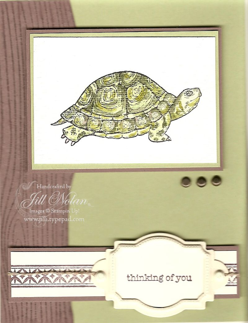 Sc 0809 man turtle copy
