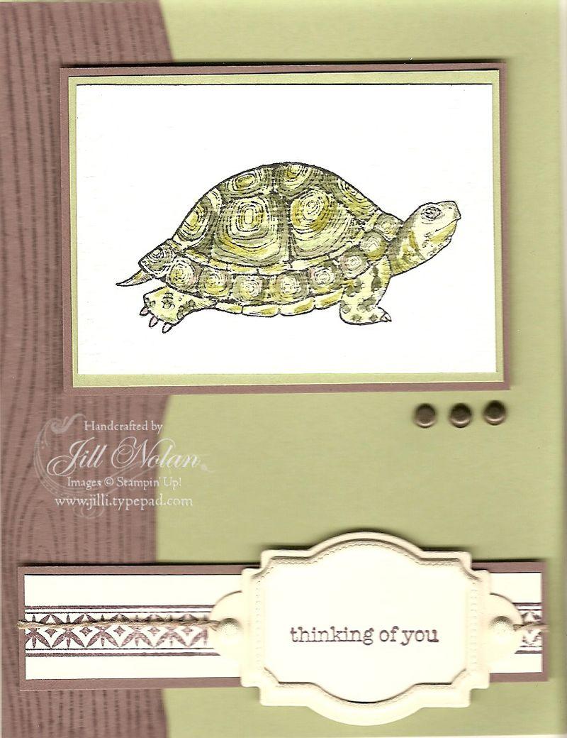 Sc 0809 man turtle copy