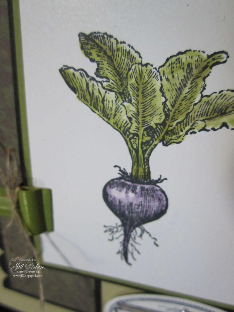 Vege radish