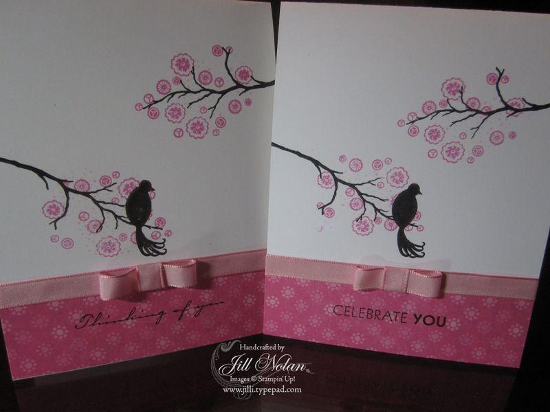 Sb bird 2 cards
