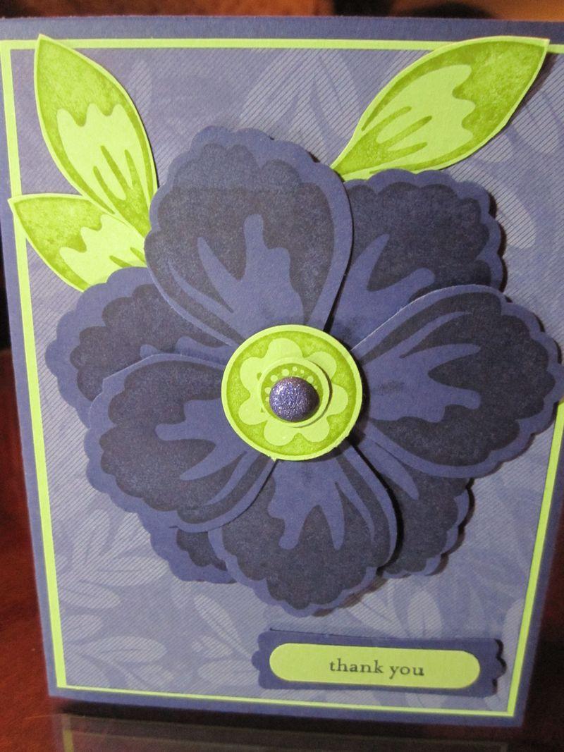 Jrr febraury purple flower